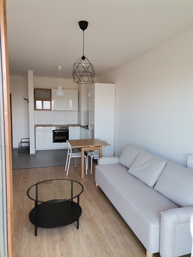 salon z kuchnią w mieszkaniu